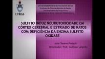 Sulfito induz neurotoxicidade em córtex cerebral e estriado de ratos com deficiência da sulfito oxidase