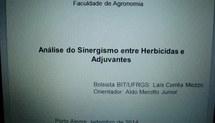 Análise do sinergismo entre herbicidas e adjuvantes