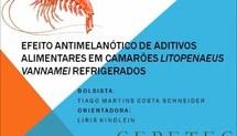 EFEITO ANTIMELANÓTICO DE ADITIVOS ALIMENTARES EM CAMARÕES Litopenaeus vannamei REFRIGERADOS