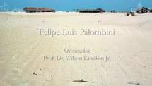 Reciclagem de polipropileno oriundo de rejeitos encontrados no litoral brasileiro