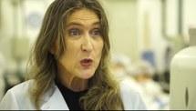 Dia C da Ciência - Pesquisas com células-tronco